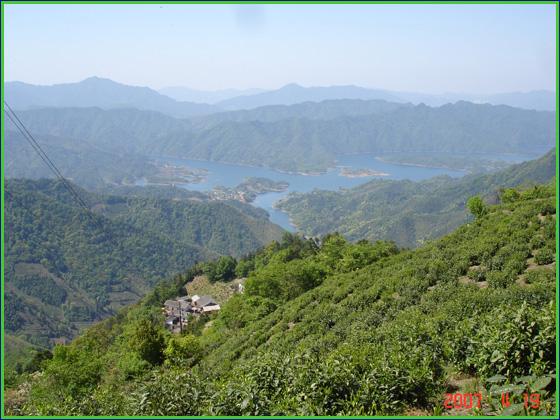 猴魁茶园,猴岗村落,太平湖黄荆岛远景